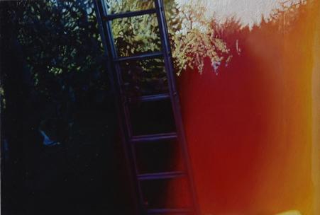 Garten | 2013 | Öl auf MDF | 15 x 22,2 cm