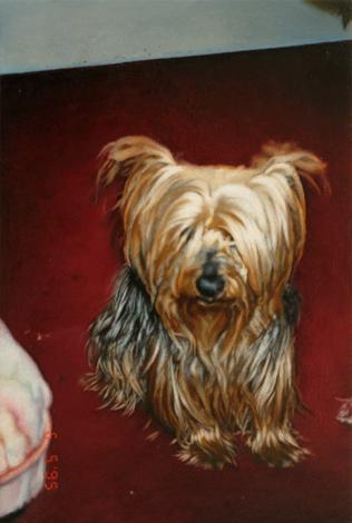 Hund | 2018 | Öl auf MDF | 18,8 x 12,6 cm